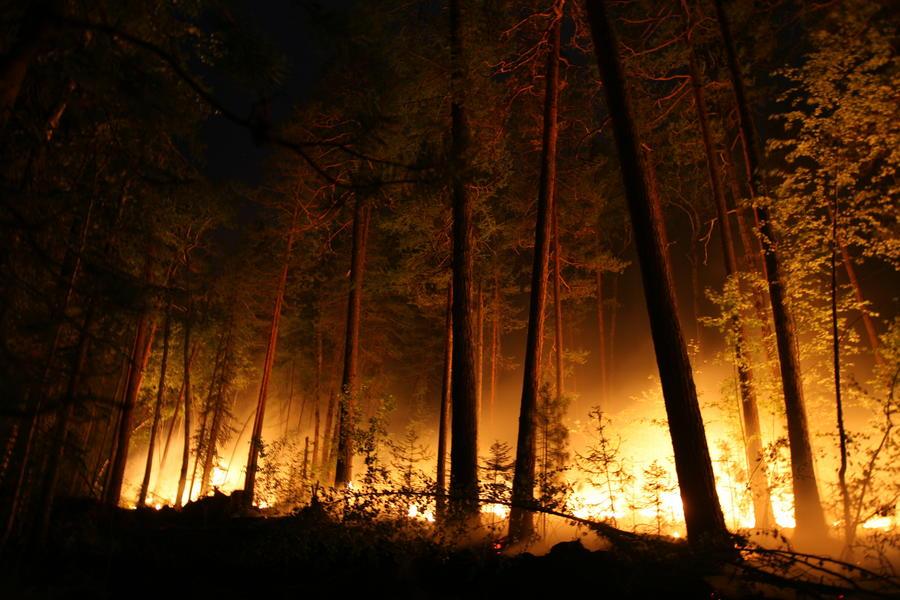 В Забайкалье лесные пожары привели к возгоранию на складе с боеприпасами, движение по Транссибу остановлено