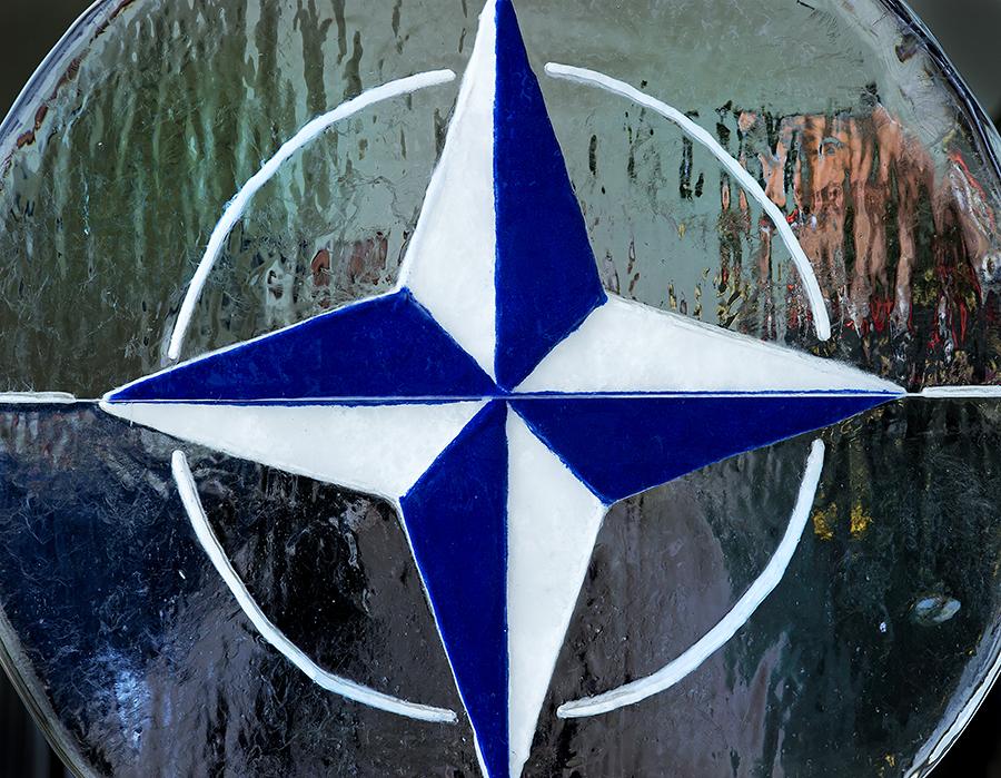 НАТО поддержал французскую интервенцию в Мали