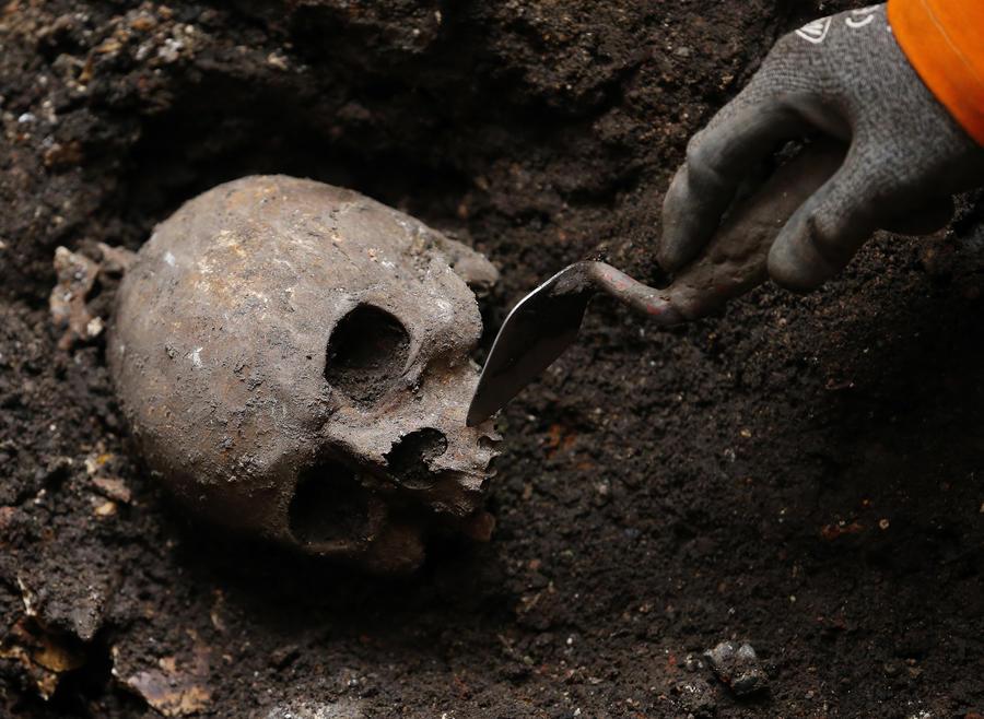 Палочка смерти: учёные нашли в древних могилах возбудитель «чумы Юстиниана»